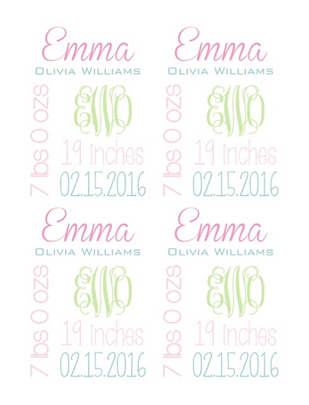 Personalized Birth Statistic Blanket Baby Girl Pink